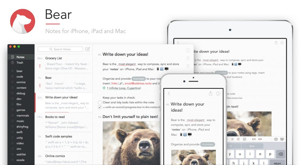 Bear v1.5 Update Comes with Significant Features